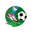 ball dribbling football vector image