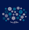 set of snowflakes design element vector image