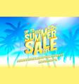 summer sale up to 50 banner promotion flyer vector image