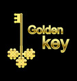 vintage golden key from all the doors on a black vector image
