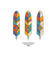 ethnic feathers vector image