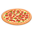 a cooked cheese pizza vector image