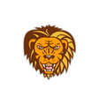 Angry Lion Big Cat Growling Head Retro vector image vector image