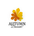 autumn discount sign three autumn colors chestnut vector image vector image