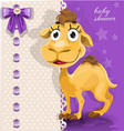 Delicate baby shower card with cute baby camel vector image