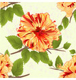 seamless texture flowers tropical yellow hibiscus vector image vector image