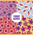 set of seamless patterns with cute animals vector image