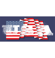 The inscriptions USA and flag of America vector image vector image