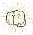 human fist on white background vector image