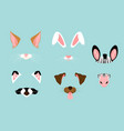 cute and nice animal ears vector image