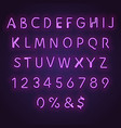 alphabet neon banner vector image