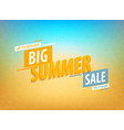 big summer sale vector image