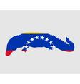 Caiman Venezuela vector image vector image