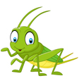 Cartoon funny cricket vector image vector image