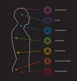 chakra system of human body vector image