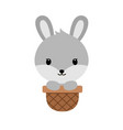 cute cartoon bunnysitting in easter basket funny vector image
