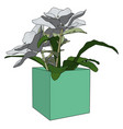 flowers in a pot on white background vector image vector image