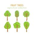 fruit trees Apple tree vector image