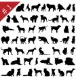 Pets silhouettes vector | Price: 1 Credit (USD $1)