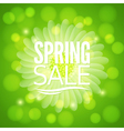 spring flower sale design background vector image