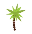 Palm summer tree tropical beach vector image vector image