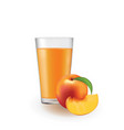 peach juice in a glass vector image vector image