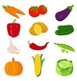 Set of colorful cartoon vegetables icons isolated vector image vector image