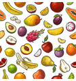 set tropical fruits color vintage vector image vector image