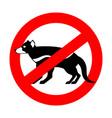stop tasmanian devil wild animal is forbidden one vector image vector image