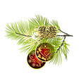 christmas and new year decoration red christmas vector image vector image