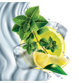 composition lemon mint and ice cubes vector image vector image
