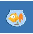Golden Fish In Aquarium Image vector image