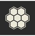 Hexagon icon vector image vector image