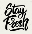stay fresh hand drawn lettering isolated on white vector image vector image
