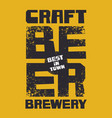 banner for best in town craft brewery beer vector image