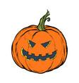 halloween pumpkin scary face festive character vector image vector image