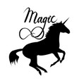 magic phrase on unicorn vector image vector image