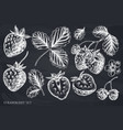 set hand drawn chalk strawberry vector image