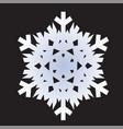 snowflakes white icon vector image