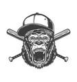 vintage monochrome ferocious gorilla head vector image vector image