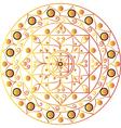 White mandala vector image