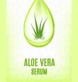 aloe vera serum vector image