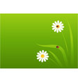 background with a ladybug vector image vector image