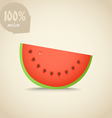 Cute fresh red water melon vector image vector image