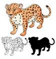 set leopard cartoon vector image