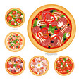 set of pizza with different vector image vector image