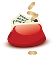 wallet and money vector image