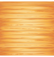 wood texture light vector image vector image