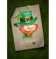 St Patricks Day Leprechaun Face vector image