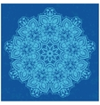 Ornamental Round Lace vector image